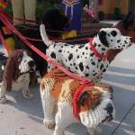lego-dogs-orlando-1